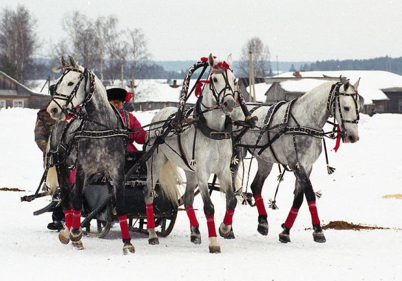 Go for a joy ride in a Troika: a Russian horse-drawn carriage